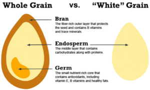 whole-vs-refined-grains