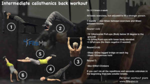 intermediate calisthenics back workout