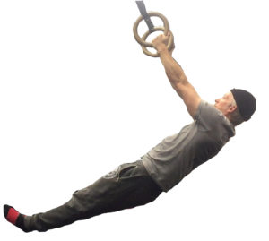 scapular horizontal pull-ups