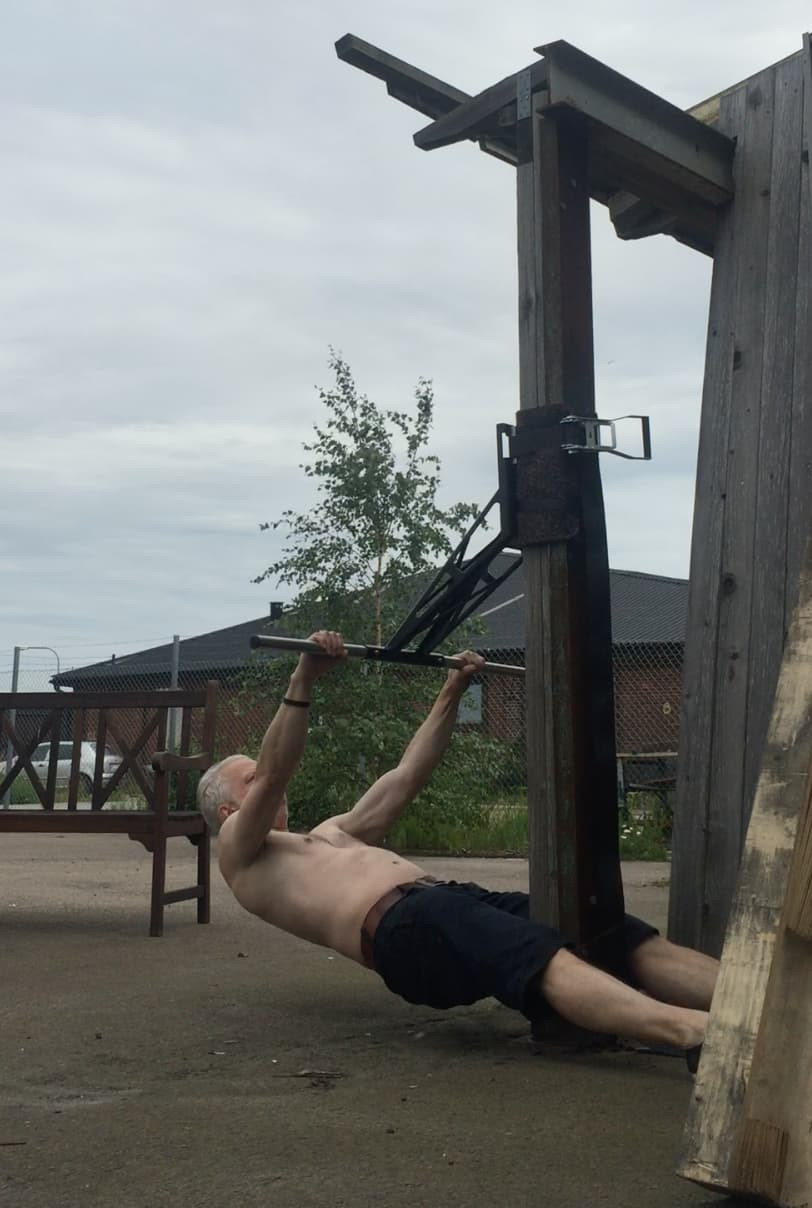 Portable pull-up bar, rows