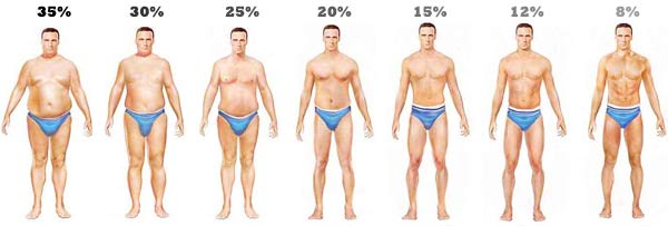 body-fat-levels-men