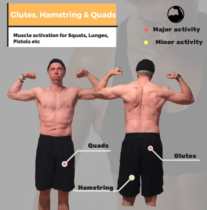 Glutes, hamstrings and quads
